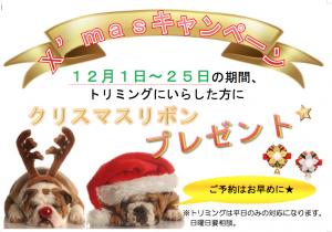 トリミングクリスマスキャンペーン